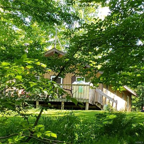 616 Hunter Lake Road, Parksville, NY 12768 (MLS #4959896) :: William Raveis Legends Realty Group