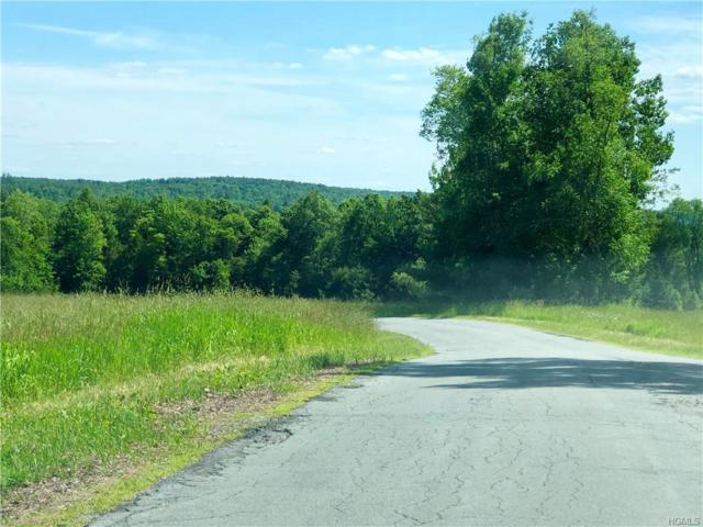 129 Old County Road, Cochecton, NY 12726 (MLS #4963684) :: Shares of New York