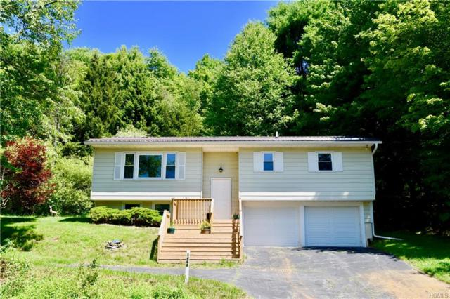 1468 Old Route 17, Roscoe, NY 12776 (MLS #4971432) :: William Raveis Legends Realty Group