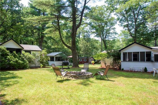 64 Sarine Road, Wurtsboro, NY 12790 (MLS #5008444) :: William Raveis Baer & McIntosh