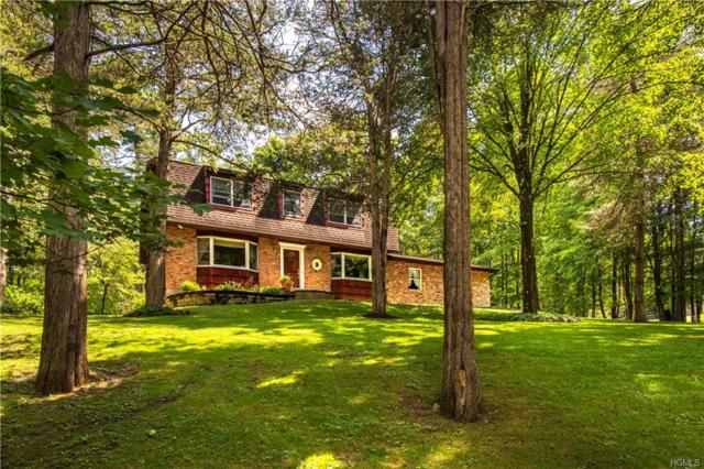 18 Panel Lane, Florida, NY 10921 (MLS #5014993) :: William Raveis Legends Realty Group