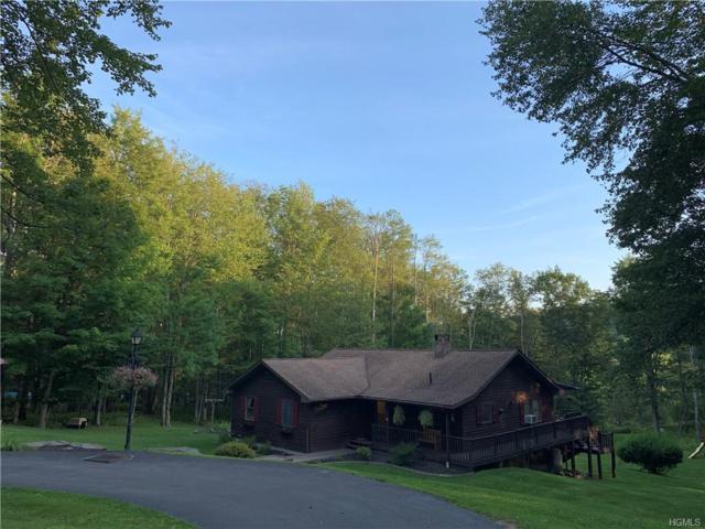 211 Hastings Court, Grahamsville, NY 12740 (MLS #5021450) :: Mark Boyland Real Estate Team
