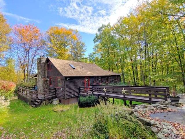 57 Island Road, Grahamsville, NY 12740 (MLS #5036048) :: William Raveis Legends Realty Group