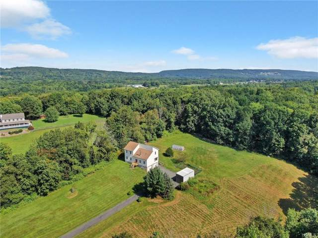 134 Mill Pond Road, Otisville, NY 10963 (MLS #5039205) :: The McGovern Caplicki Team