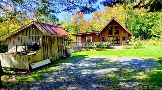 678 Red Hill Knolls Road, Grahamsville, NY 12740 (MLS #5039446) :: William Raveis Legends Realty Group