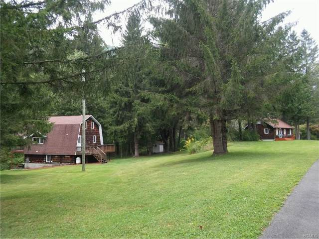 14948 Cr 17, Roscoe, NY 12776 (MLS #5052187) :: William Raveis Legends Realty Group