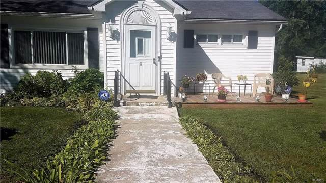 3 Walnut Street, Fallsburg, NY 12733 (MLS #5053158) :: Mark Boyland Real Estate Team