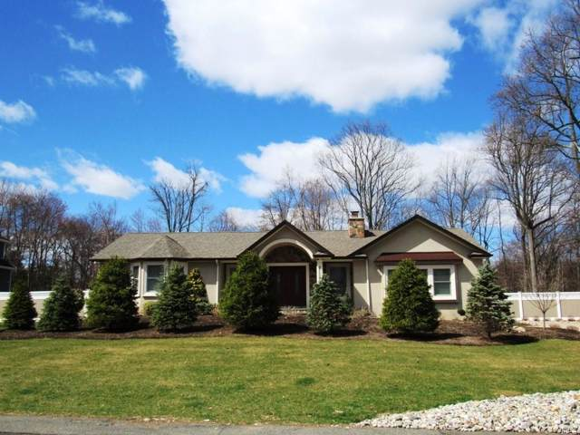 141 Burda Lane, New City, NY 10956 (MLS #5058862) :: Shares of New York