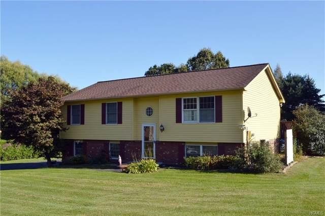 39 White Farm Road, Wingdale, NY 12594 (MLS #5071255) :: Mark Boyland Real Estate Team