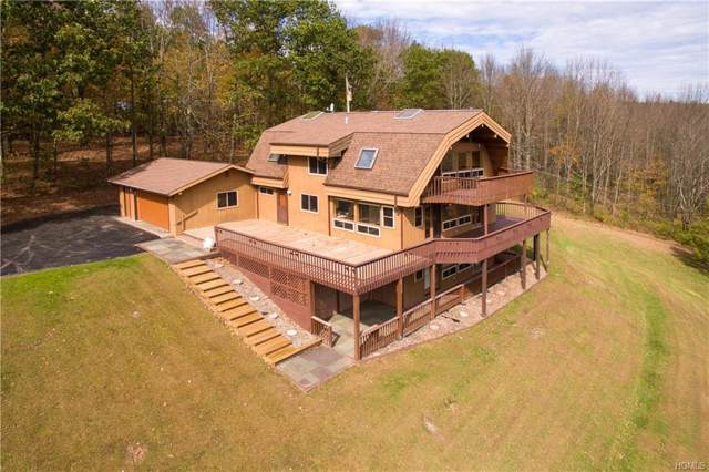 145 Old Danzer Road, Livingston Manor, NY 12758 (MLS #5076642) :: William Raveis Legends Realty Group
