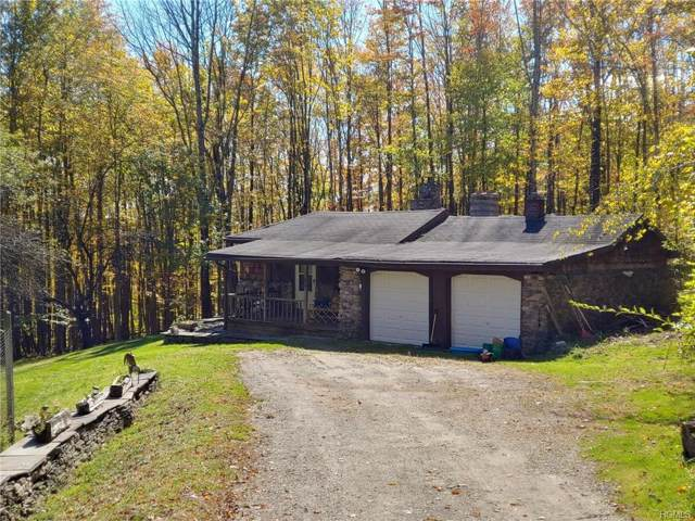 35 Island Road, Grahamsville, NY 12740 (MLS #5093034) :: William Raveis Legends Realty Group
