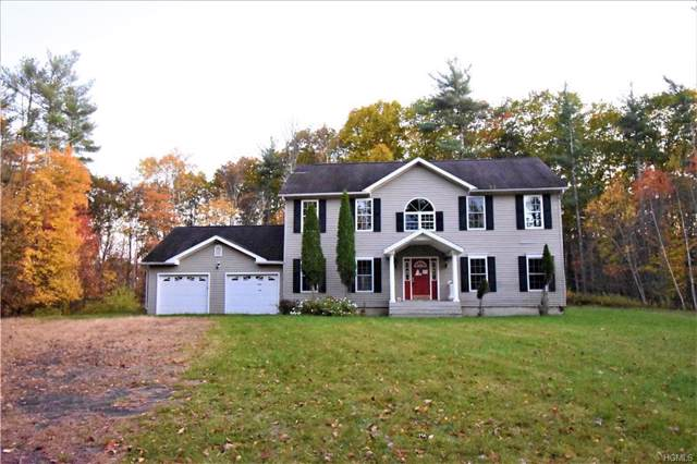 39 Diamond Court, Saugerties, NY 12477 (MLS #5093926) :: The Anthony G Team