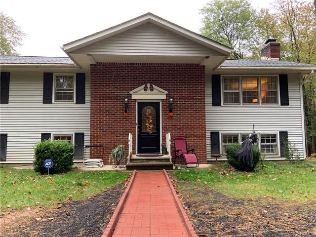 3 Coyote Court, Kingston, NY 12401 (MLS #5095544) :: Marciano Team at Keller Williams NY Realty
