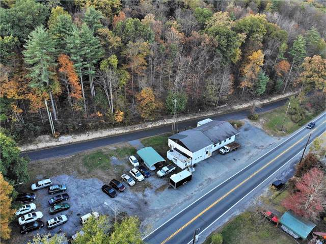 609 Us Route 209, Godeffroy, NY 12729 (MLS #5099455) :: Mark Seiden Real Estate Team