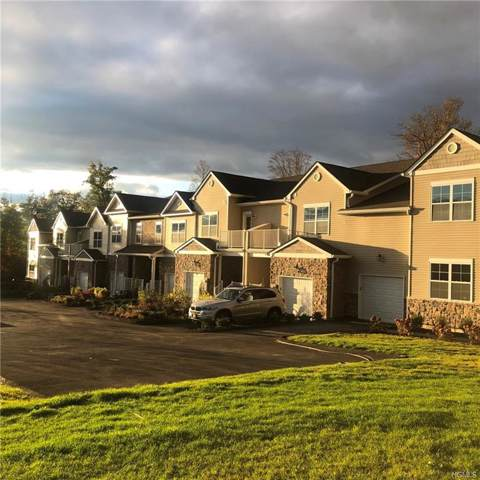 289 Hudson View Terrace, Hyde Park, NY 12538 (MLS #5106186) :: Shares of New York