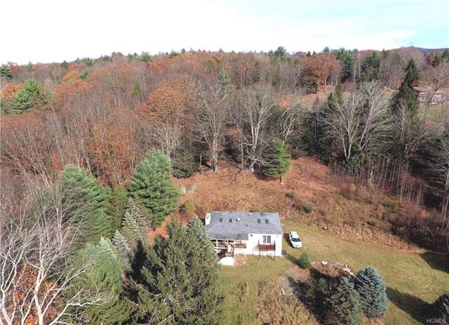 16 Frank Smith Road, Napanoch, NY 12458 (MLS #5113344) :: William Raveis Legends Realty Group