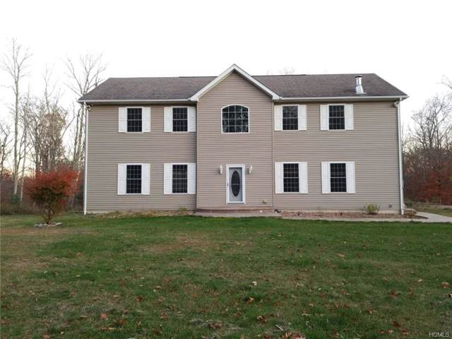 74 Doll Road, Bloomingburg, NY 12721 (MLS #5117601) :: The McGovern Caplicki Team