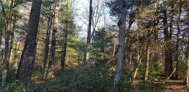 Lot 11 County Rd 26, Narrowsburg, NY 12764 (MLS #5120329) :: William Raveis Legends Realty Group