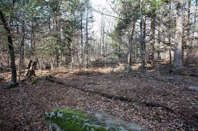 Tr 51 Strossel Road, Narrowsburg, NY 12764 (MLS #5121629) :: William Raveis Baer & McIntosh