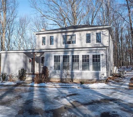 189 Horsenden Road, New Paltz, NY 12561 (MLS #5128777) :: Cronin & Company Real Estate