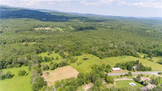 2316 Ulster Heights Road, Woodbourne, NY 12788 (MLS #6002155) :: Mark Boyland Real Estate Team