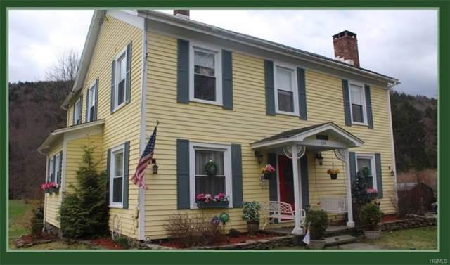 154 Rockland Road, Roscoe, NY 12776 (MLS #6003280) :: William Raveis Baer & McIntosh