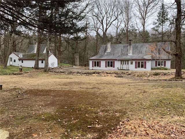 49 Cascade Lake Road, Warwick, NY 10990 (MLS #6005166) :: William Raveis Baer & McIntosh