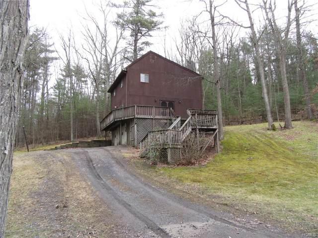 353 Prospect Hill Road, Cuddebackville, NY 12729 (MLS #6011268) :: William Raveis Baer & McIntosh