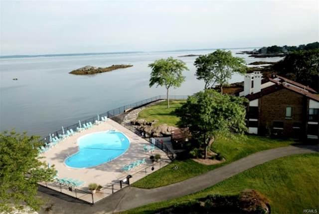 17 Waters Edge, Rye City, NY 10580 (MLS #H6013760) :: Kevin Kalyan Realty, Inc.