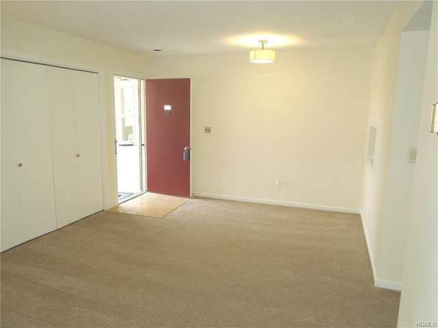 10 Wild Oaks Road #207, Goldens Bridge, NY 10526 (MLS #6016342) :: Mark Boyland Real Estate Team