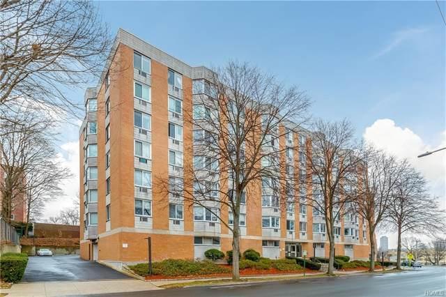 14 Nosband Avenue 3D, White Plains, NY 10605 (MLS #H6018155) :: Kevin Kalyan Realty, Inc.