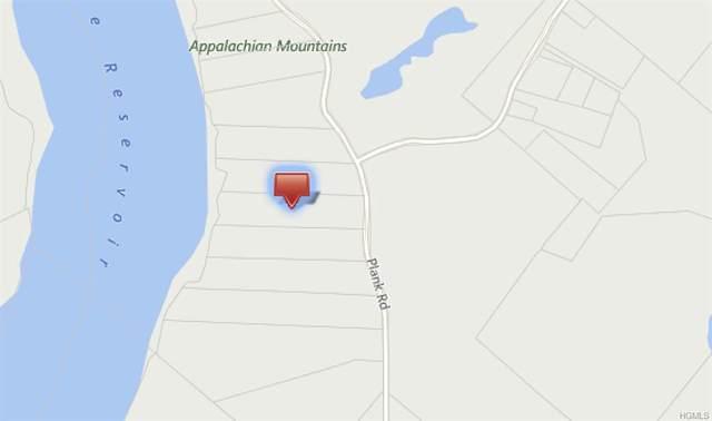 23.-1-1.21 Plank Road, Forestburgh, NY 12777 (MLS #6019249) :: William Raveis Baer & McIntosh