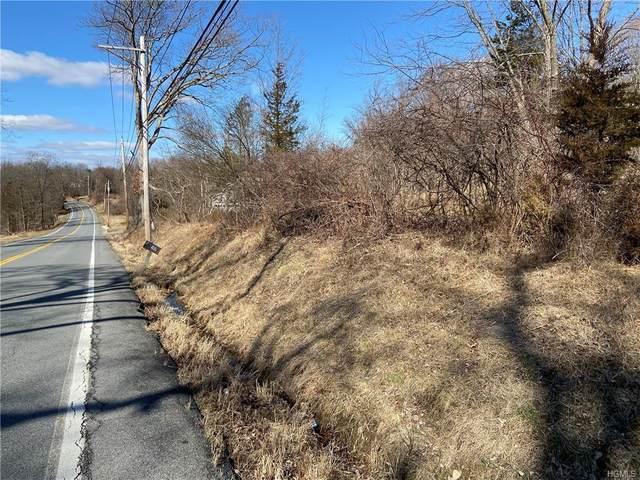 146 Pine Island Turnpike, Warwick Town, NY 10990 (MLS #H6021153) :: William Raveis Baer & McIntosh