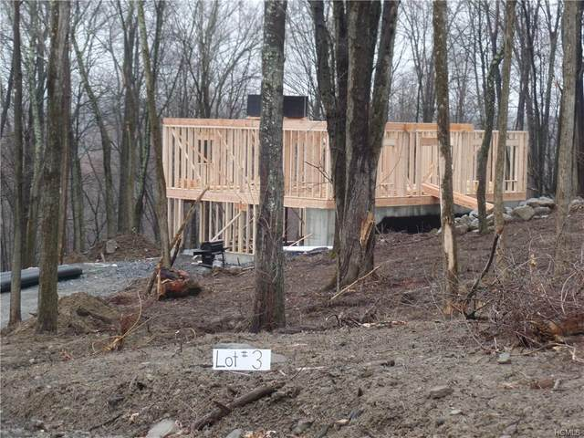 104 Forest Road, Newburgh Town, NY 12589 (MLS #H6022874) :: Cronin & Company Real Estate