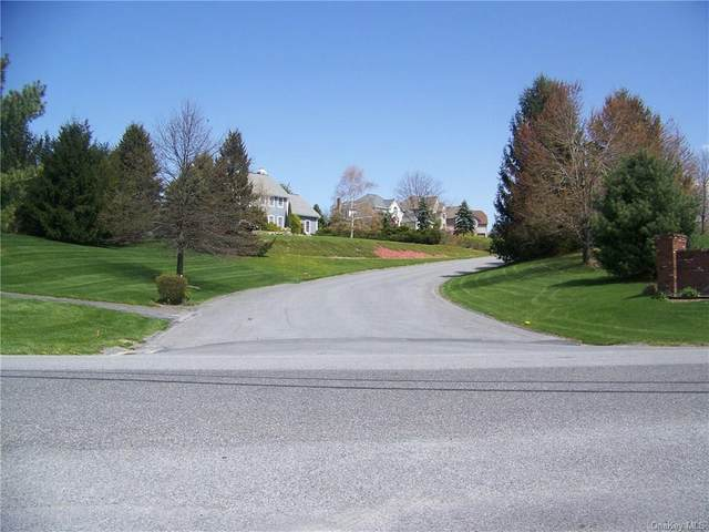 Far Horizons Drive, Newburgh, NY 12550 (MLS #H4720000) :: Keller Williams Points North - Team Galligan