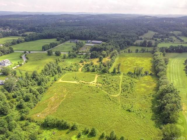 Marge Hortons Way, Campbell Hall, NY 10916 (MLS #H4725033) :: Kendall Group Real Estate | Keller Williams