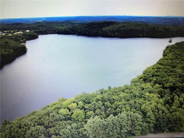 Kenoza Trail, Kenoza Lake, NY 12723 (MLS #H4910856) :: Frank Schiavone with William Raveis Real Estate