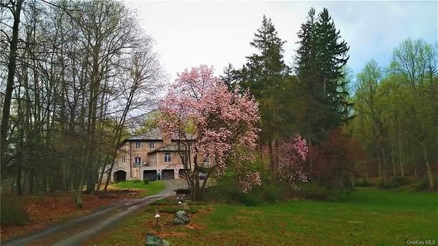 36 E Lake Road, Tuxedo Park, NY 10987 (MLS #H4918566) :: McAteer & Will Estates   Keller Williams Real Estate