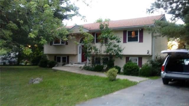 10 Birchwood Drive, Goshen Town, NY 10924 (MLS #H5003518) :: William Raveis Baer & McIntosh