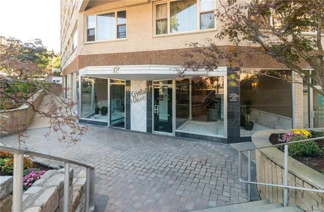 12 Old Mamaroneck Road 7N, White Plains, NY 10605 (MLS #H5090301) :: Nicole Burke, MBA | Charles Rutenberg Realty