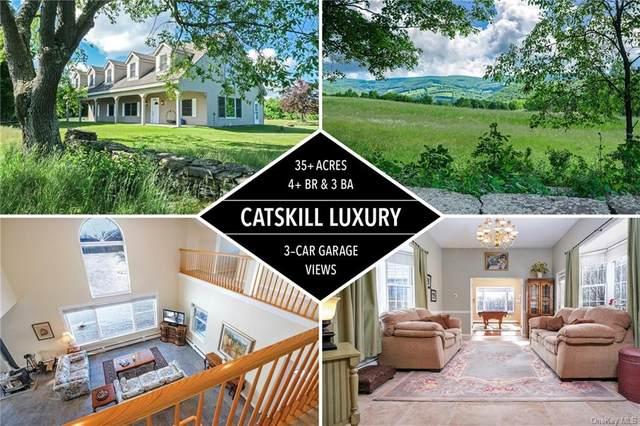 2601 Jackson Hill Road, Franklin, NY 13846 (MLS #H6008973) :: McAteer & Will Estates   Keller Williams Real Estate