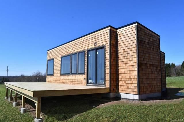 78 Kratz Road, Delaware, NY 12723 (MLS #H6018096) :: Signature Premier Properties