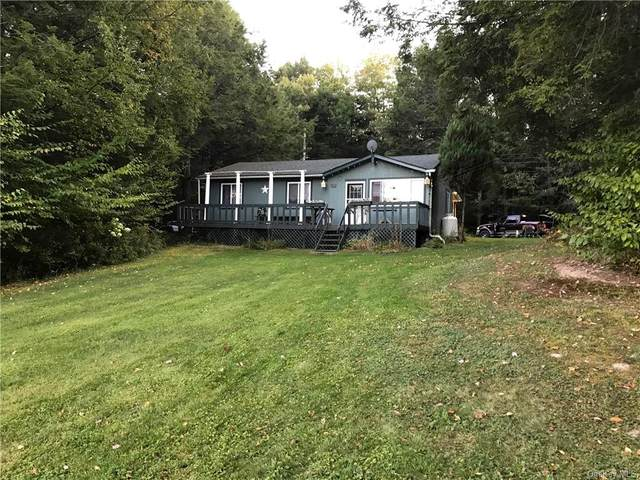 461 Delaware Lake Road, Long Eddy, NY 12760 (MLS #H6018918) :: Frank Schiavone with William Raveis Real Estate
