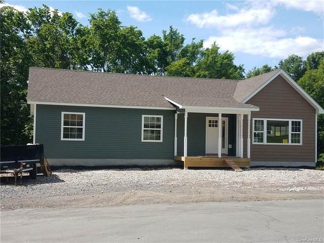 115 Highland Avenue, Montgomery Town, NY 12543 (MLS #H6021803) :: RE/MAX Edge