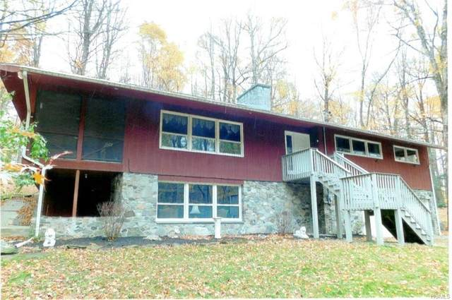 58 Gretna Woods Road, Pleasant Valley, NY 12569 (MLS #H6025743) :: Signature Premier Properties