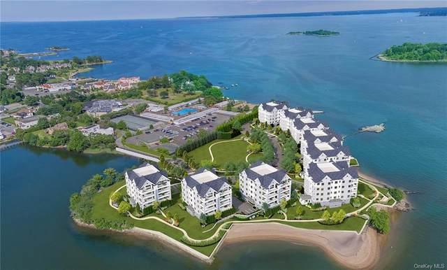 740 Davenport Avenue 7PH, New Rochelle, NY 10805 (MLS #H6030584) :: Mark Seiden Real Estate Team