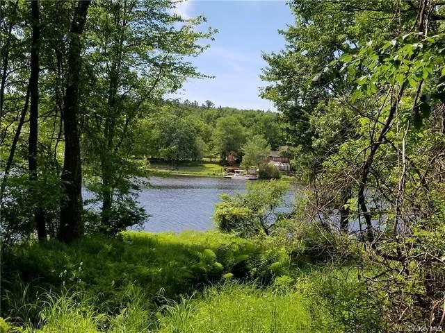 * Darling Road, Bethel, NY 12720 (MLS #H6034685) :: Cronin & Company Real Estate
