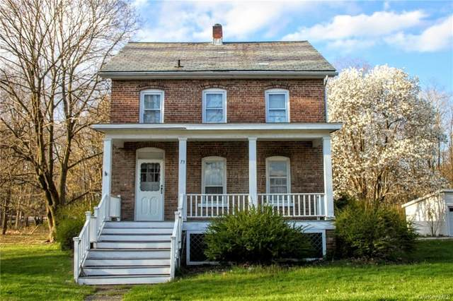 73 Orrs Mills Road, Blooming Grove, NY 12577 (MLS #H6034814) :: William Raveis Legends Realty Group