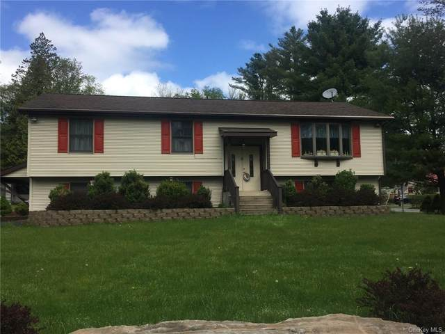 4 Marjorie Drive, Thompson, NY 12701 (MLS #H6035629) :: Cronin & Company Real Estate