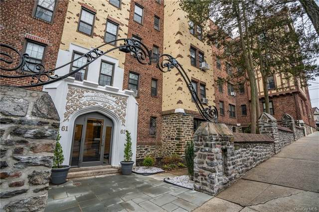 61 W Grand Street 3E, Mount Vernon, NY 10552 (MLS #H6037136) :: William Raveis Baer & McIntosh